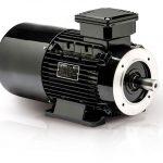 Motori elettrici autofrenanti ca