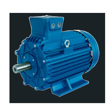 Serie A Ghisa - motori deflagranti gritti elettrotecnica